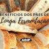 Benefícios dos pães de longa fermentação