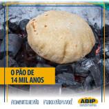 Pão mais antigo do mundo tem receita de 14 mil anos revelada por arqueólogos