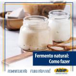 Como produzir e cuidar do seu fermento natural?