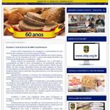 Newsletter ABIP nº1 – Comemorativa 60 Anos