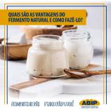 Quais são as vantagens do fermento natural e como fazê-lo?